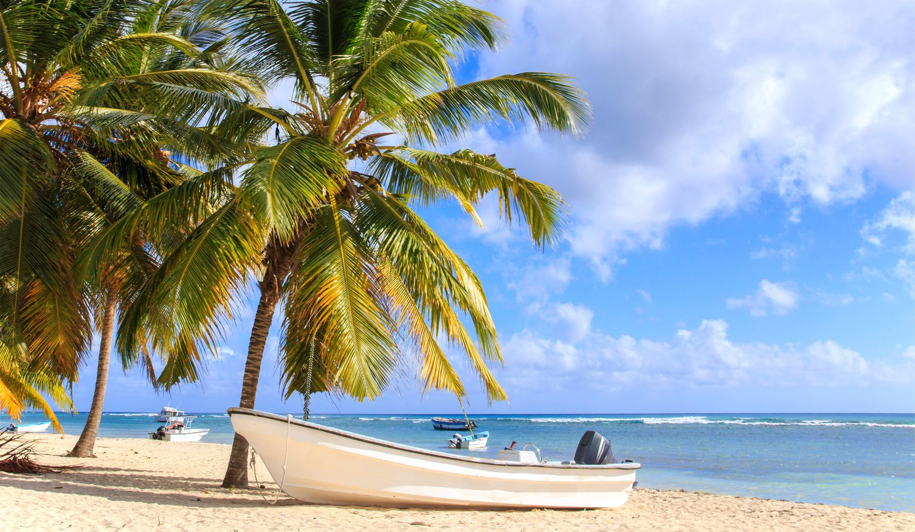 Лучший план на зимний отпуск: недорогие билеты в Доминикану