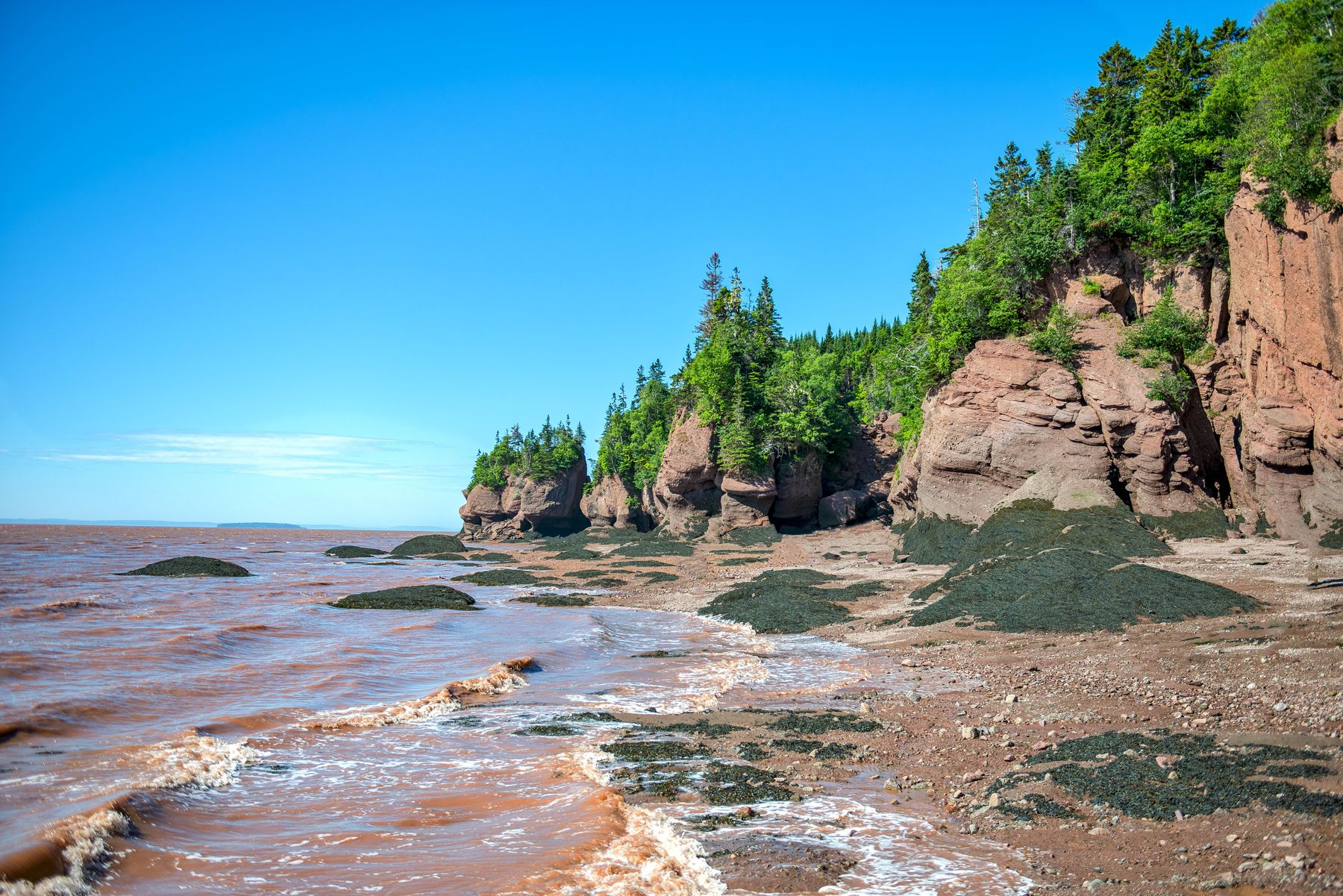 shores of Bay of Fundy in New Brunswick during the day