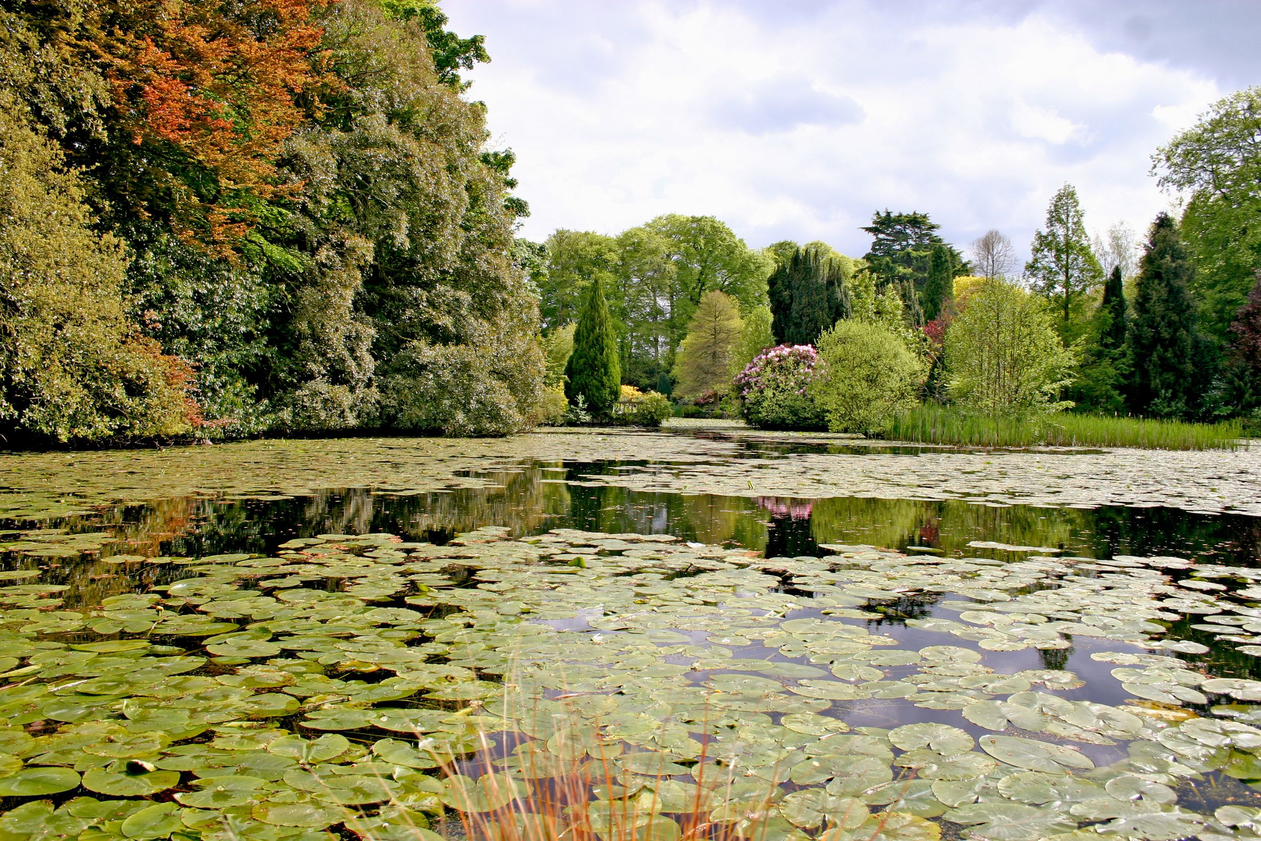 Enjoy the verdant countryside with activity holidays in Ireland's rivers