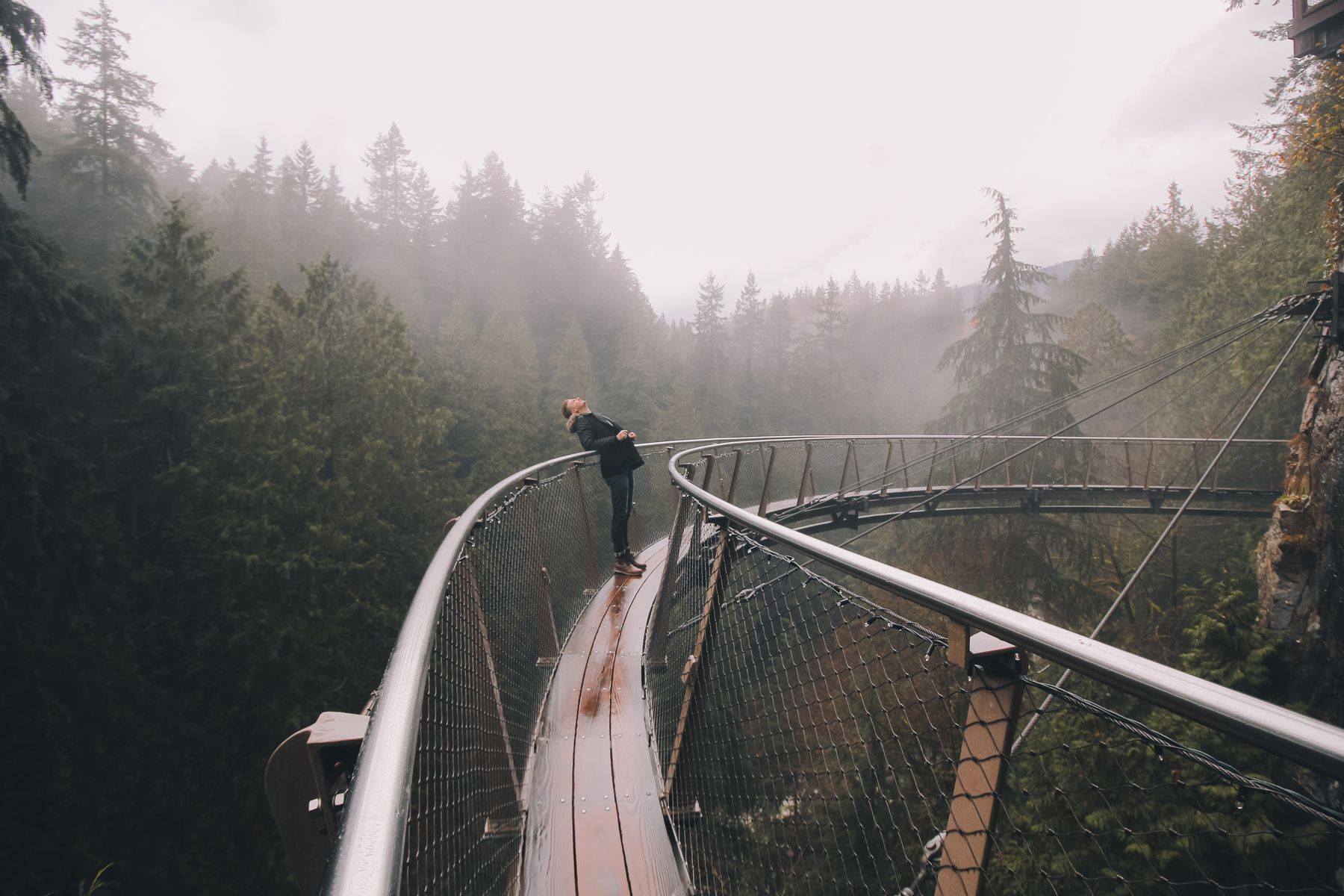a person looking skyward while standing on an arched walkway in a misty forest