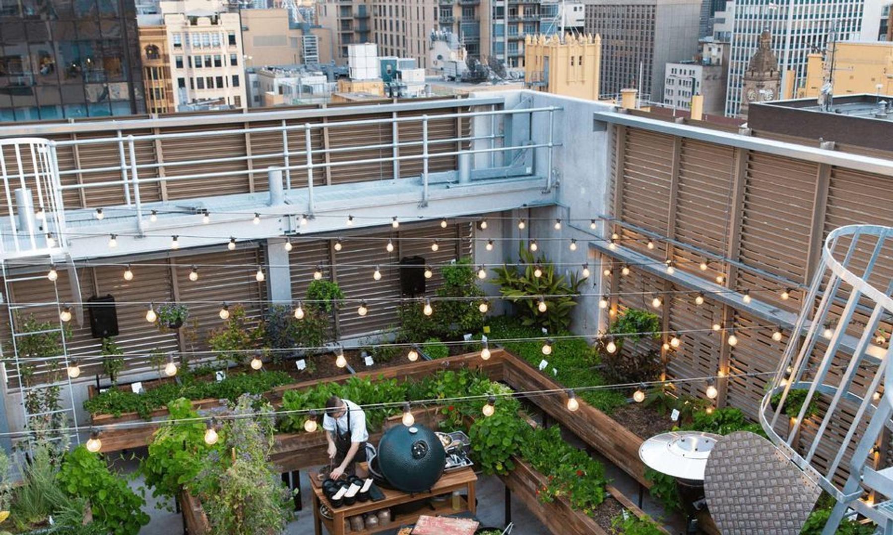 QT Hotel's Melbourne CBD rooftop garden