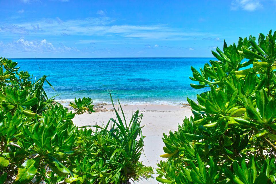 Die schönsten Inseln Japans: Okinawa Honto, Ryukyu-Inseln, Nansei-Inselgruppe