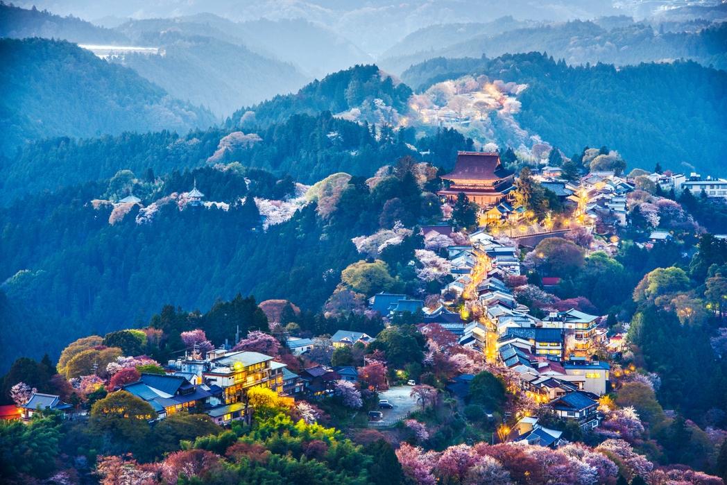 Vacanze estive: Giappone