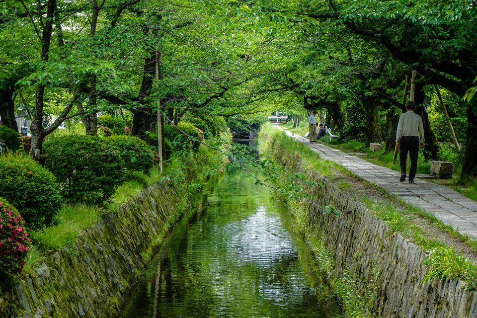 Podróż poślubna w Kioto