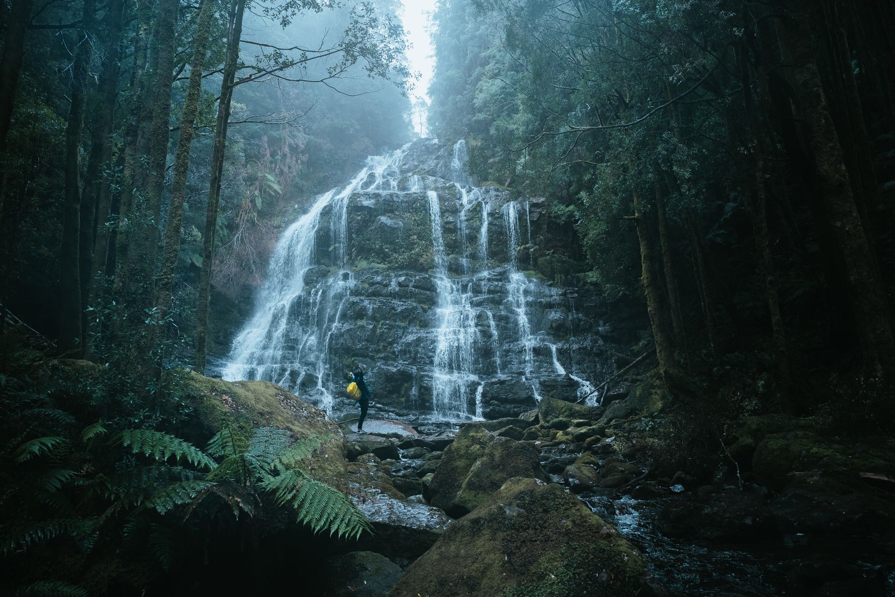 The Nelson Falls in Wild Rivers National Park