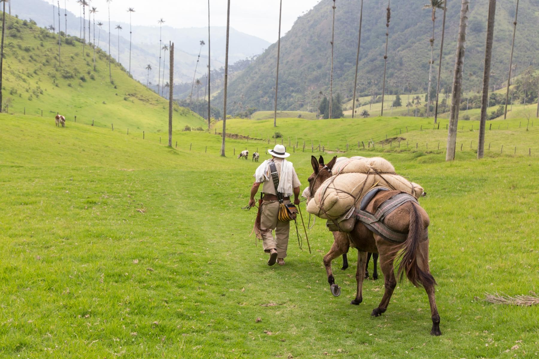 Colombia es el paraíso para los viajeros por su gran diversidad de paisajes