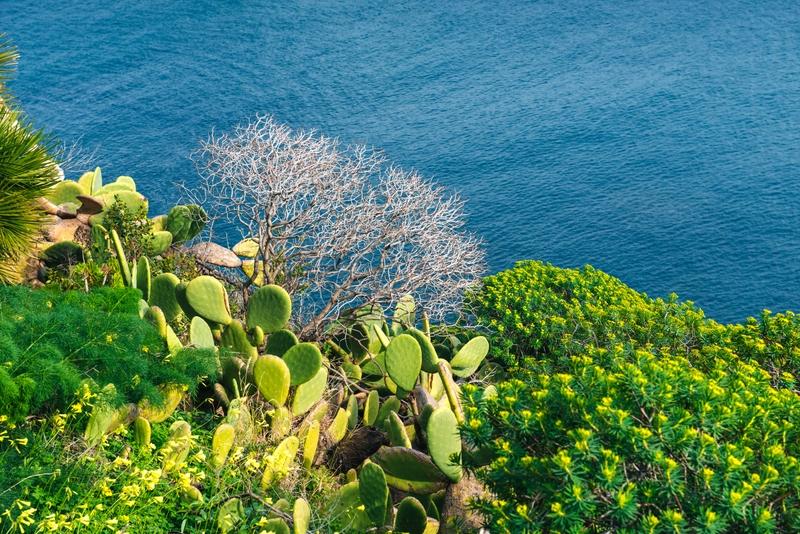 Isole della Sicilia: Salina