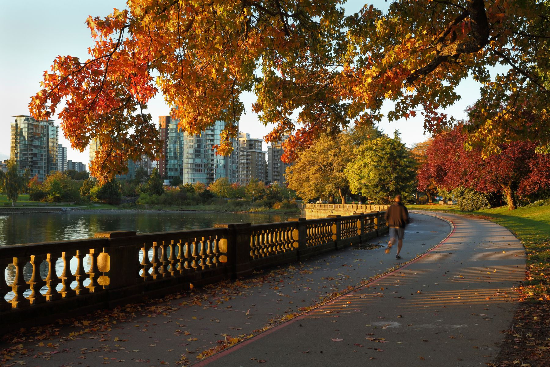 Jogging around Stanley Park in the fall