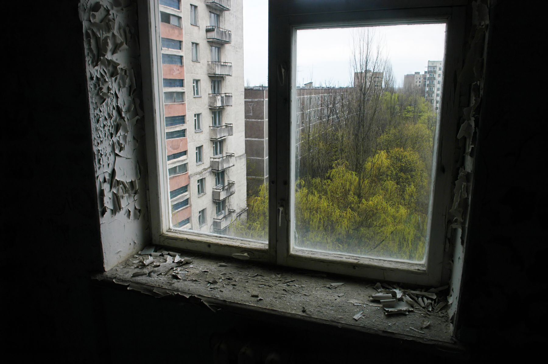 Pripyat, Ukraine overtaken by nature after Chernobyl Nuclear Plant disaster