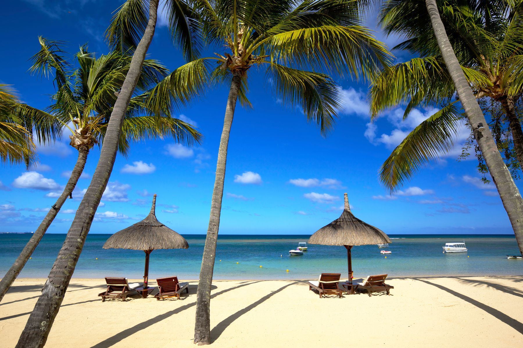 A beach in Mauritius, ideal for January holidays