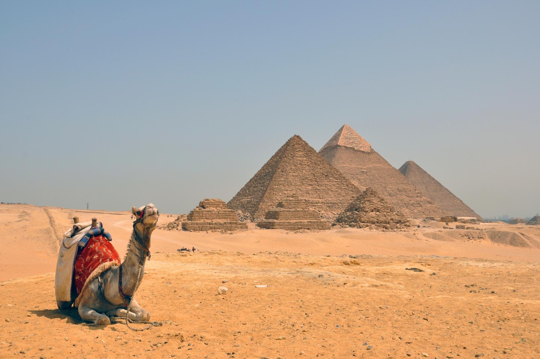 Куда поехать в июне: Египет