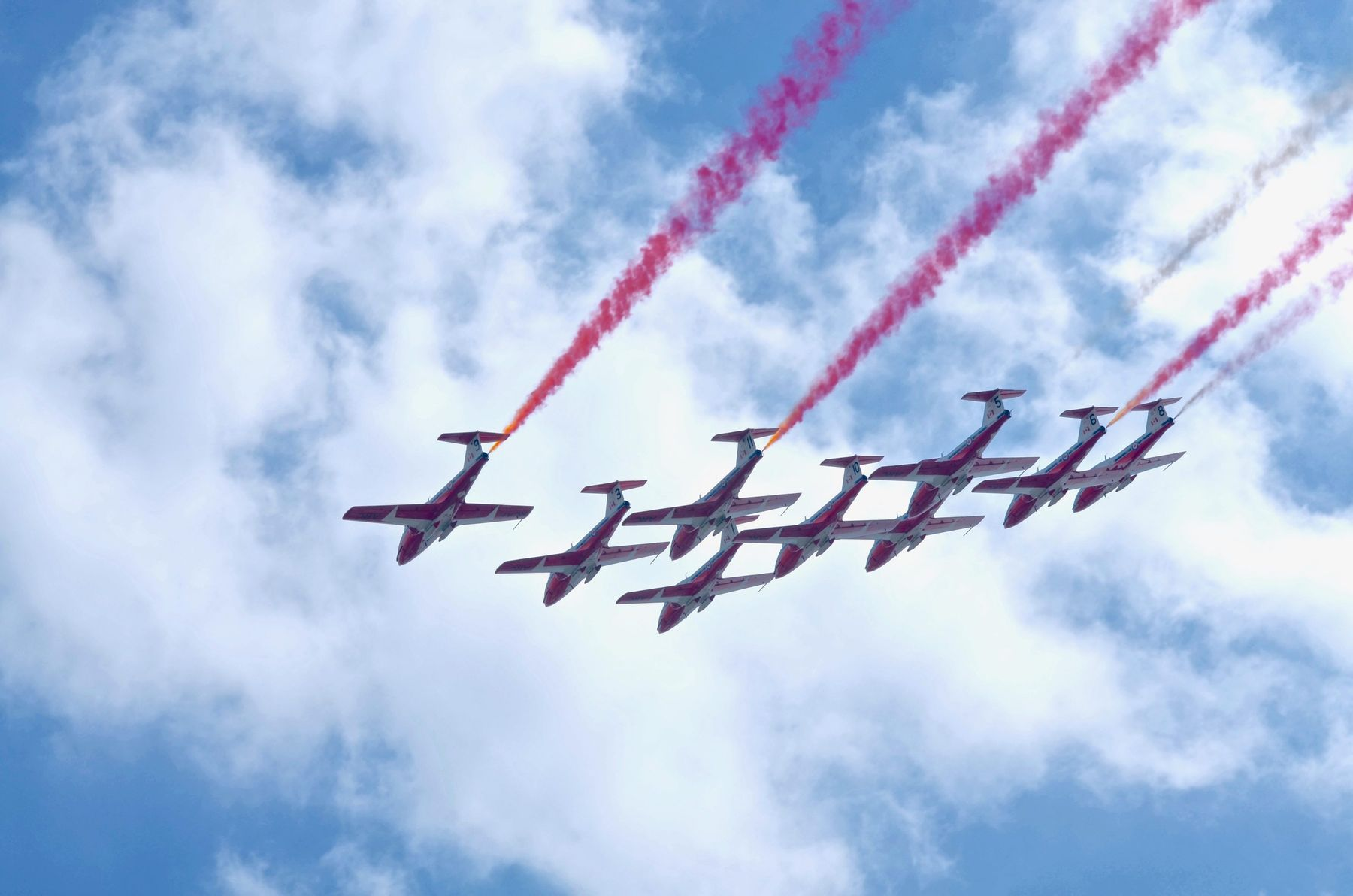 Snowbirds flying overhead for Canada Day celebrations