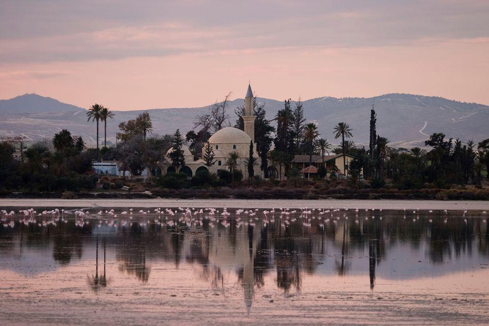 Мечеть Хала Султан Текке в Ларнаке на Кипре