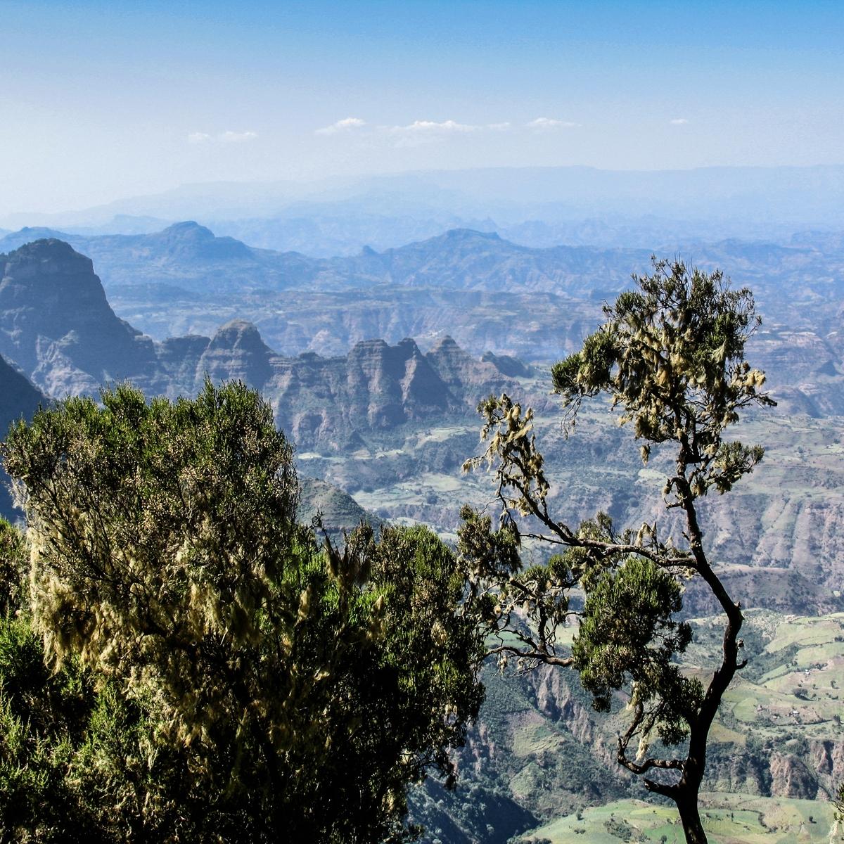 Die schönsten Reiseziele Afrikas: Simien Nationalpark, Äthiopien