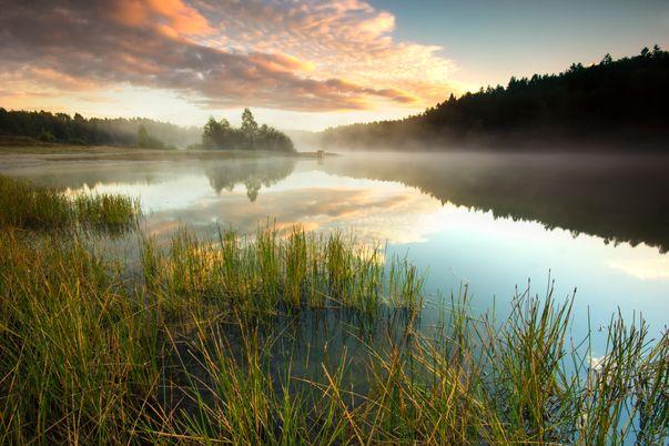 Wakacje w Polsce? Spływ kajakiem