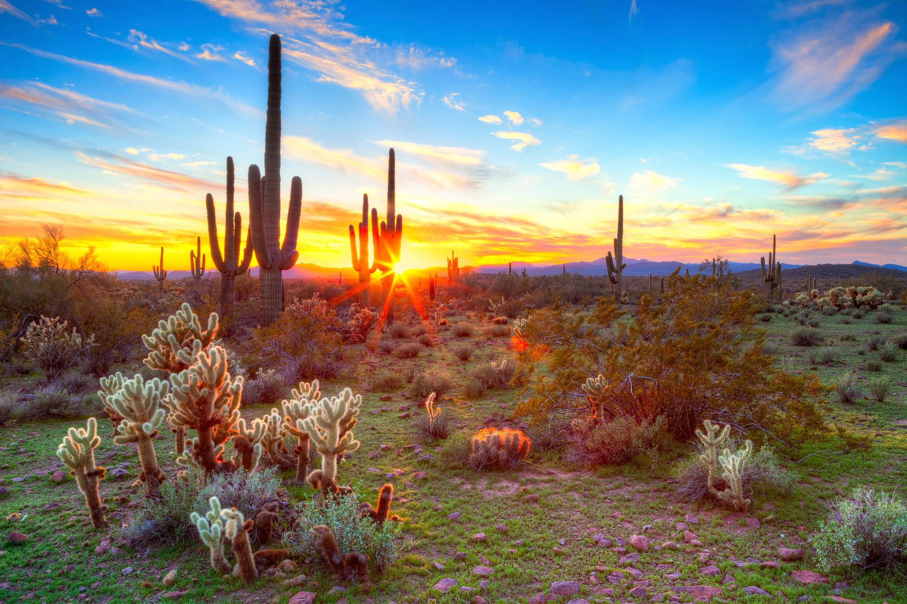 arizona, viaje en carretera arizona, viaje carretera parques nacionales, carretera monument valley, parques nacionales usa, viajes carretera