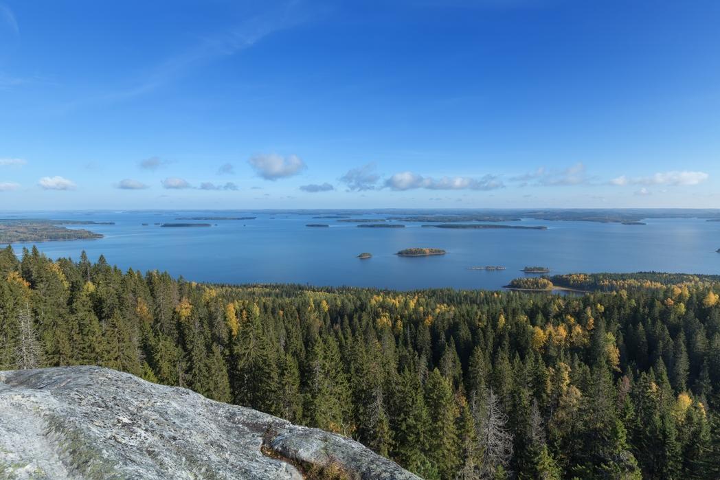 Näkymä Kolin kansallispuistoon