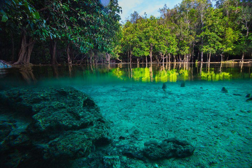 Σμαραγδένια νερά σε μαγγρόβια δάση στο Κράμπι της Ταϊλάνδης