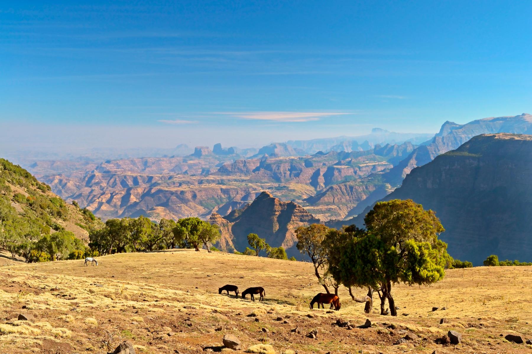 visitez l'Éthiopie en 2020