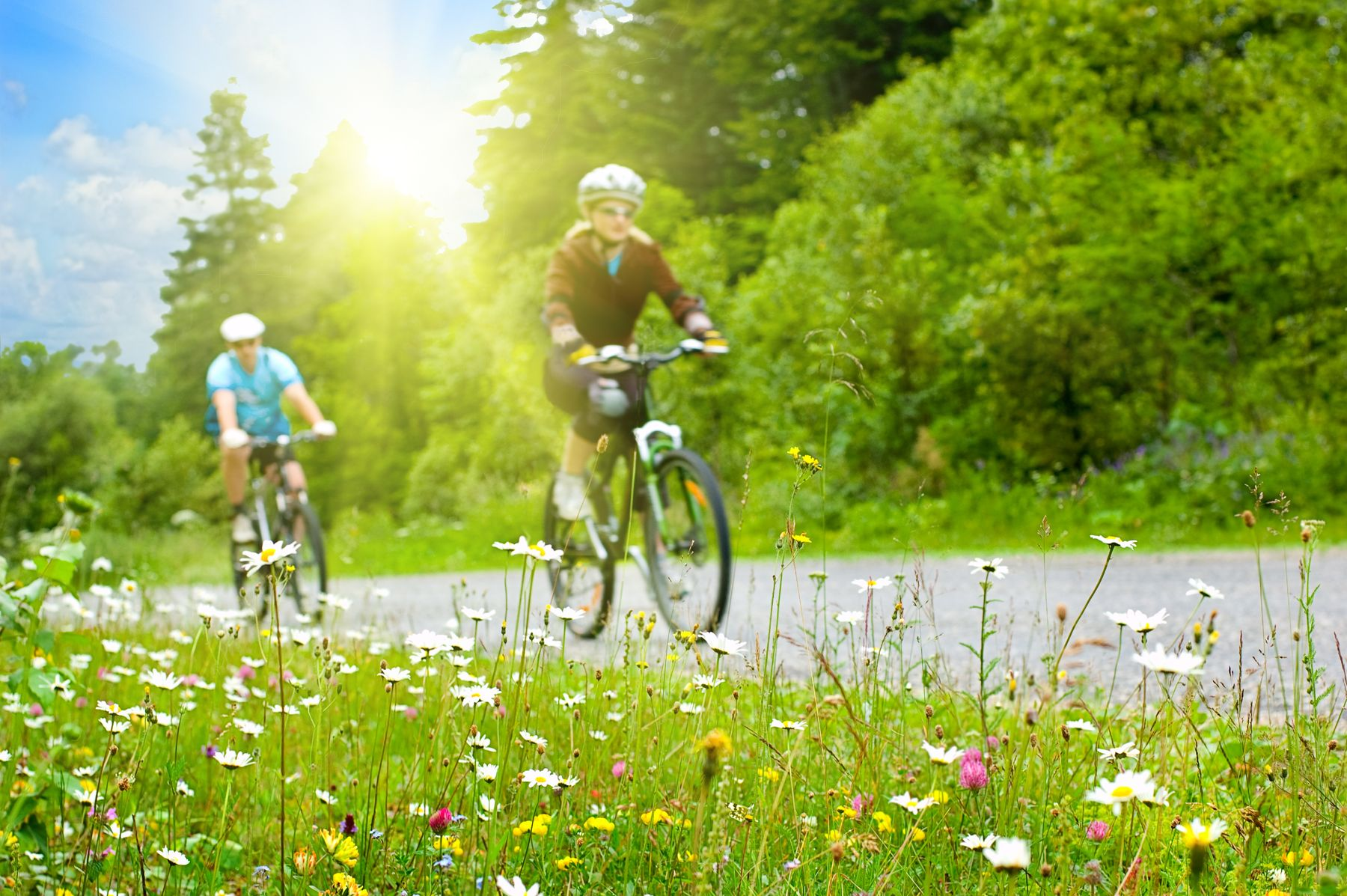 Fahrradfreundliche Naturreiseziele und Ausflugsorte