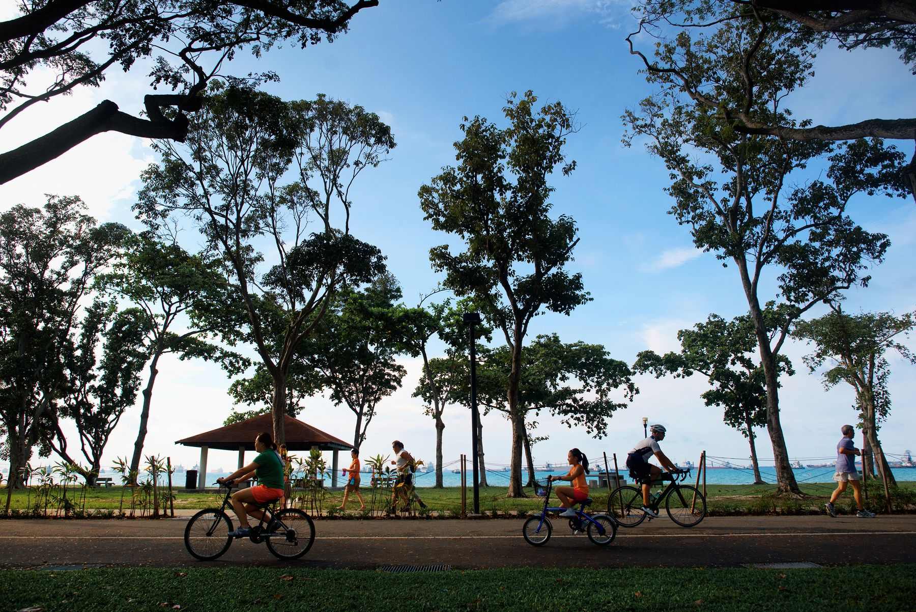cycling in east coast park