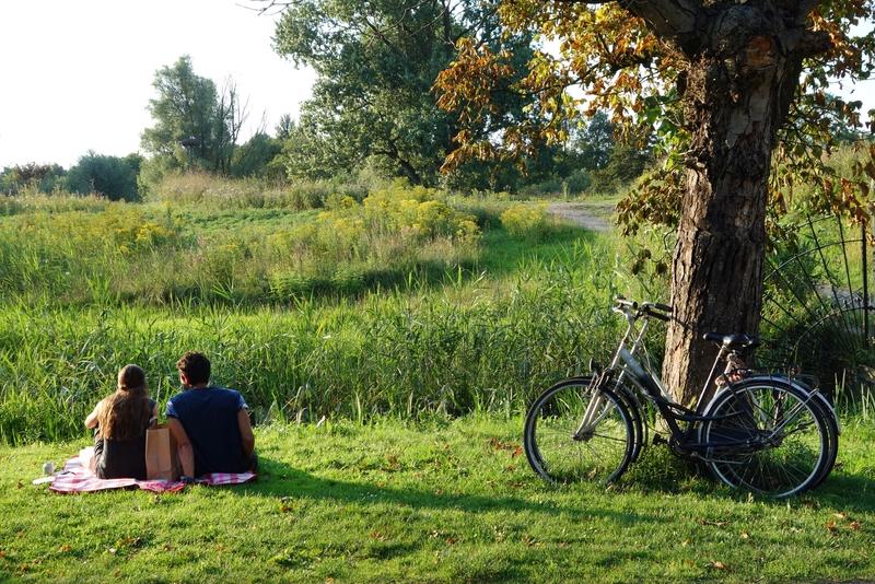 Парк Вондела, Vondelpark, — зеленый оазис по-амстердамски