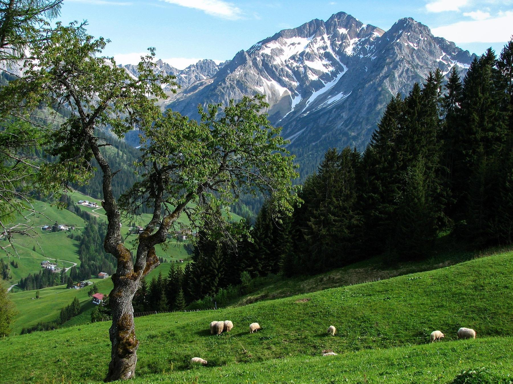 Naturwunder Österreichs: Kleinwalsertal