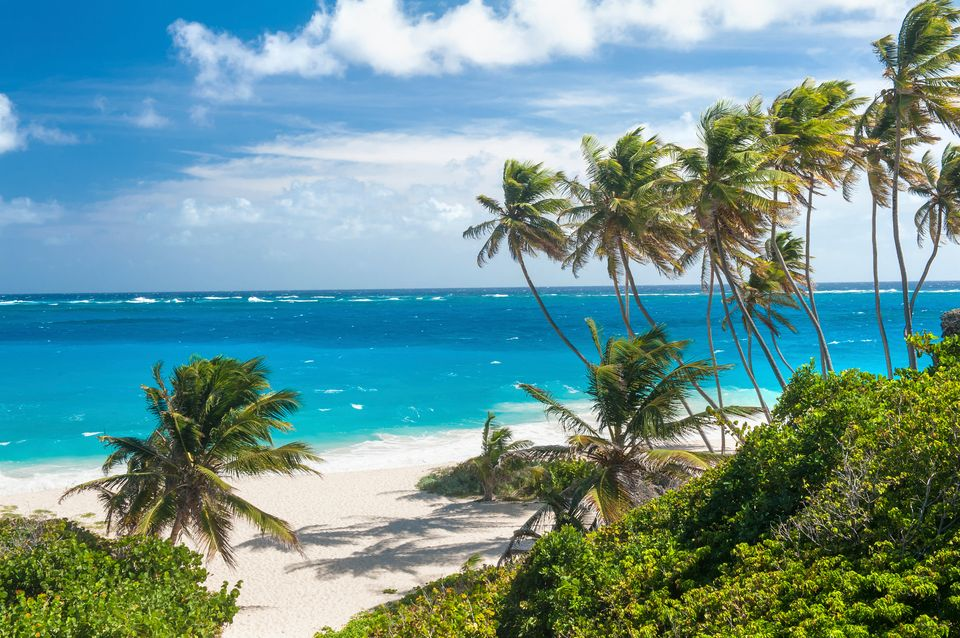 Find some of the world's best beaches in Barbados