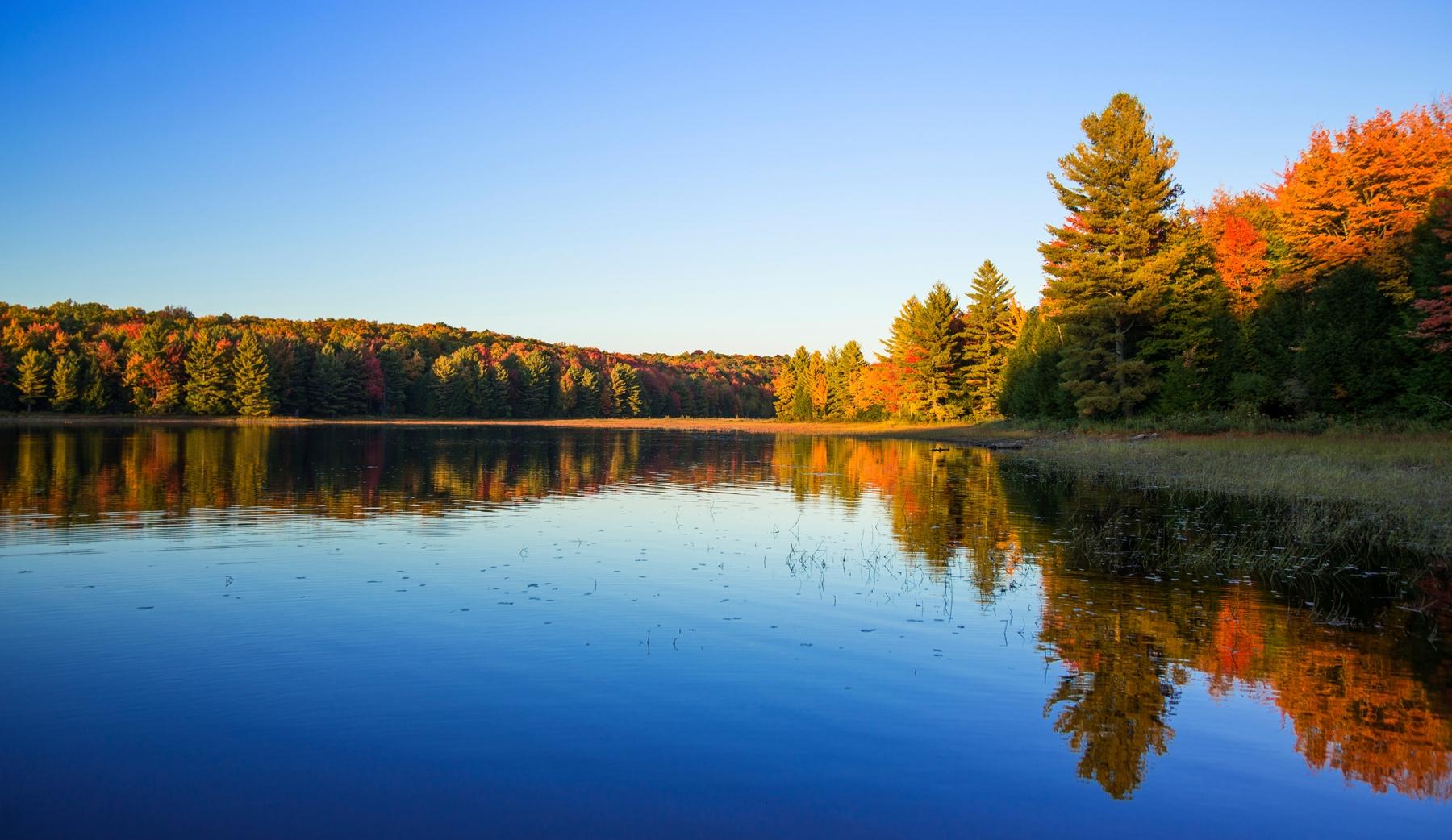 lake in Algonquin park in Ontario