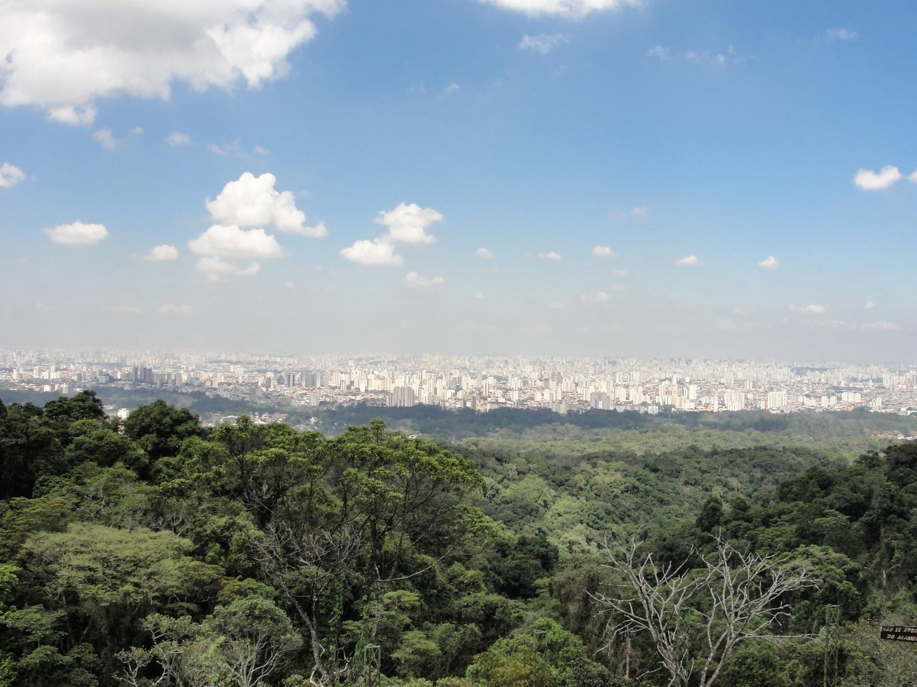 Trilha da Pedra Grande na Serra da Cantareira - Uma das mais famosas trilhas em SP