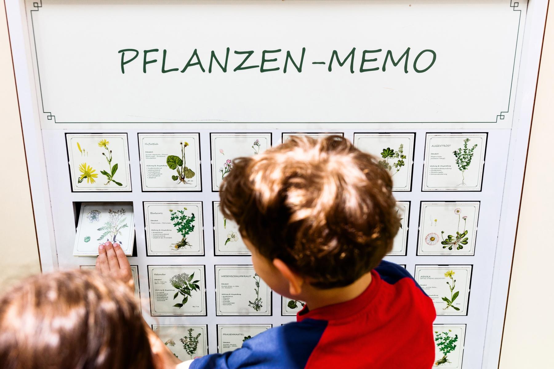 Pflanzen-Memory im Olitätenwagen