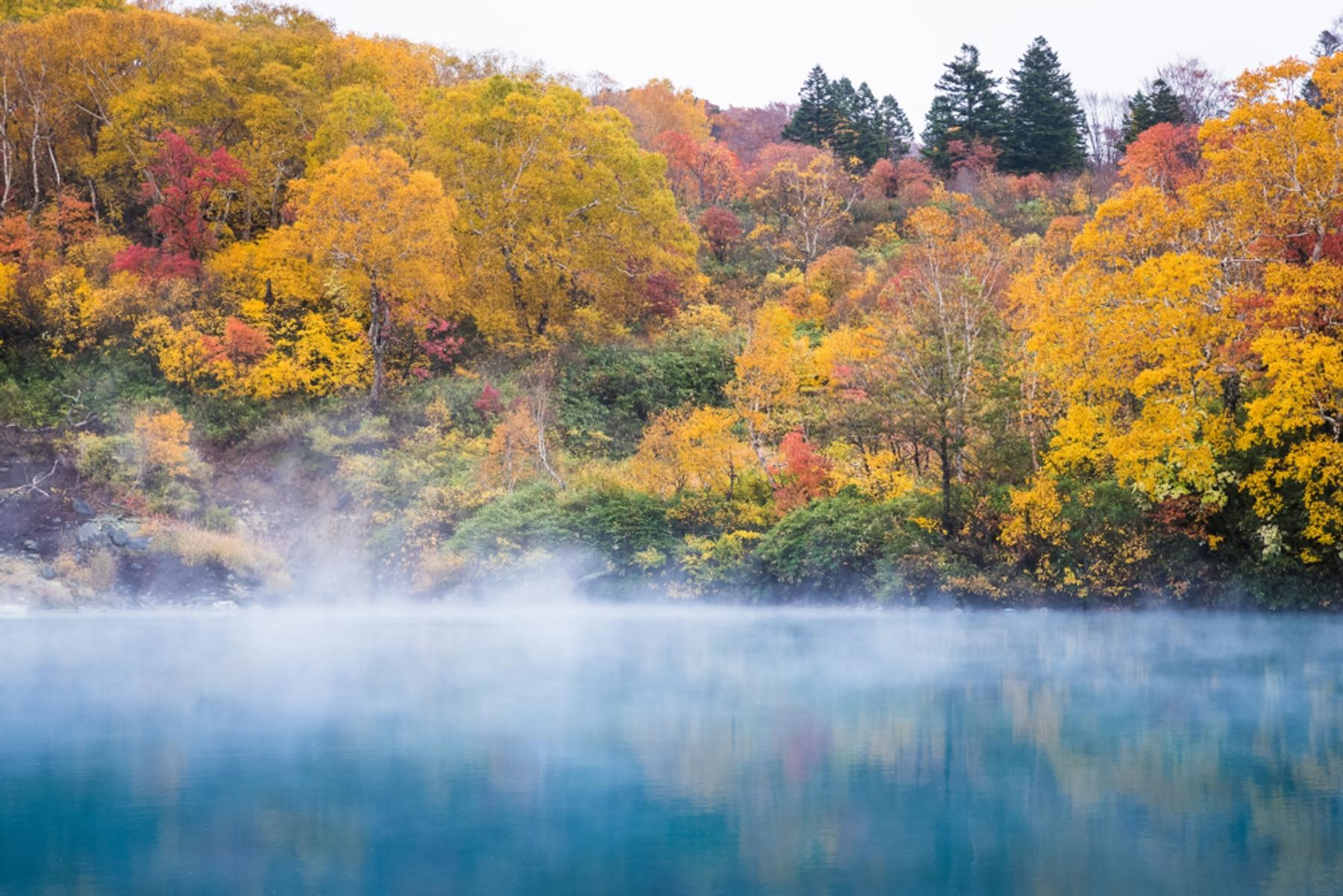 青森県 酸ヶ湯温泉にある地獄沼は紅葉の名所でもある