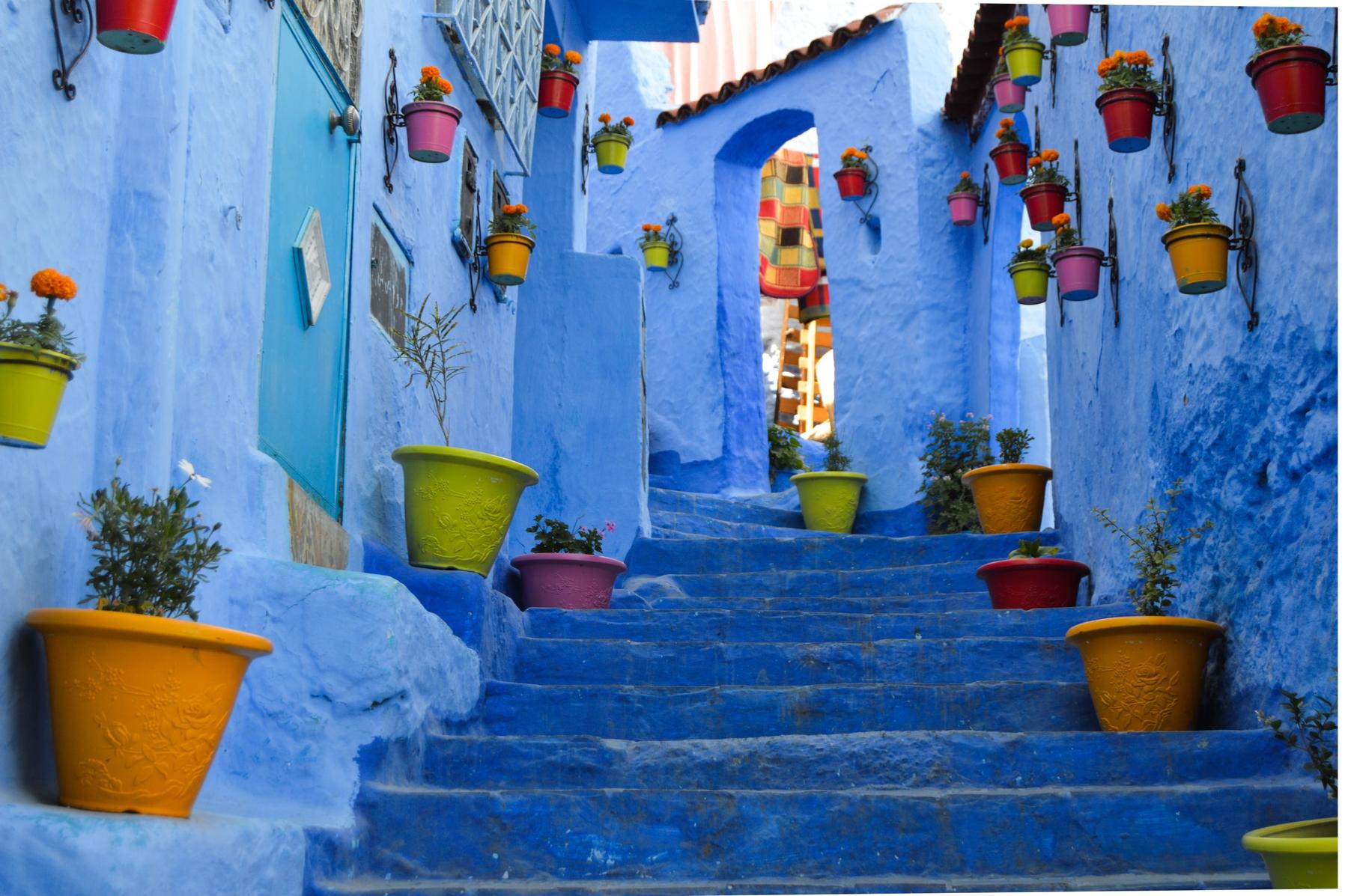 Синие стены, оконные рамы и цветочные горшки в марокканском городе Шавен