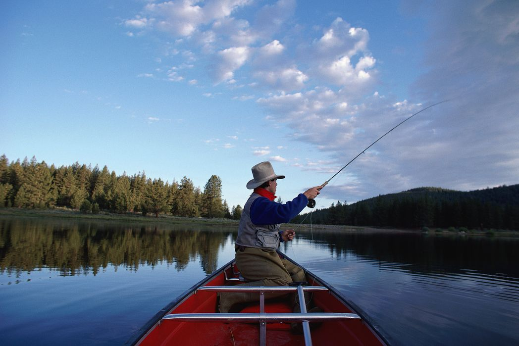 Fisherman in a boat surrounded by lush countryside