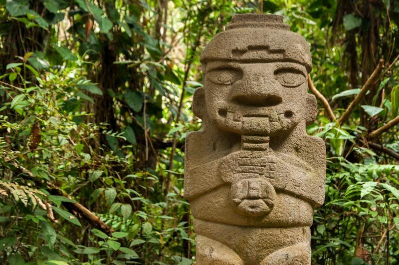 Colombian rainforest