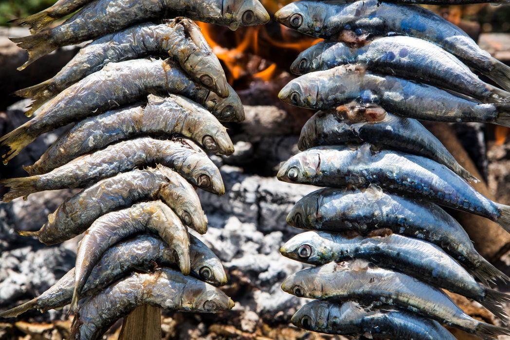 Grilled sardines on a stick - things to do in Malaga