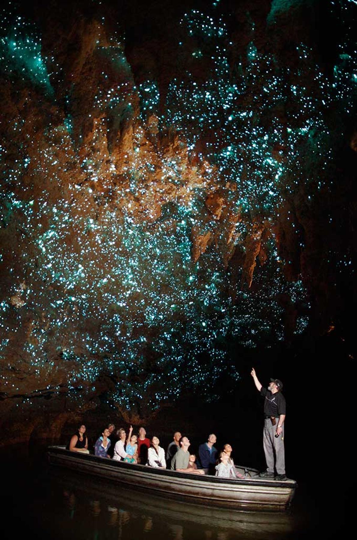 В Новой Зеландии удивительные места не заканчиваются никогда. Пещеры Вайтомо привлекают туристов светлячками, похожими на звездное небо.