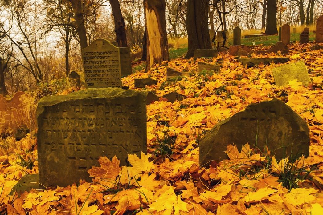 Τάφοι στο εβραϊκό νεκροταφείο της Βαρσοβίας, Πολωνία