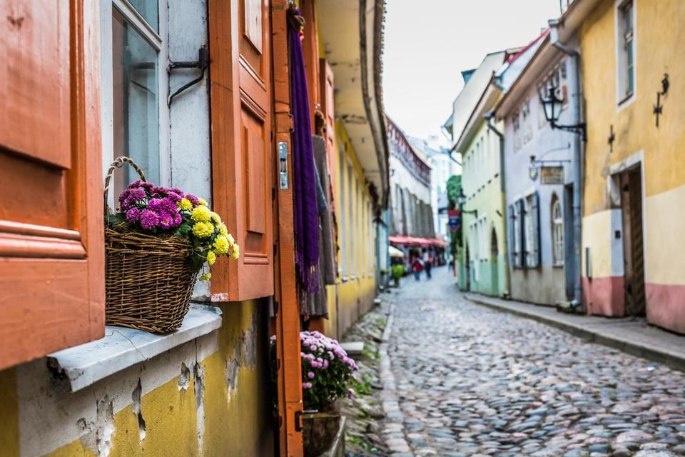 Le capitali del freddo: Tallinn
