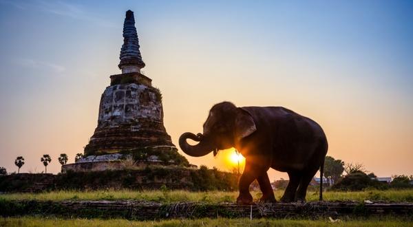 Loty do Tajlandii