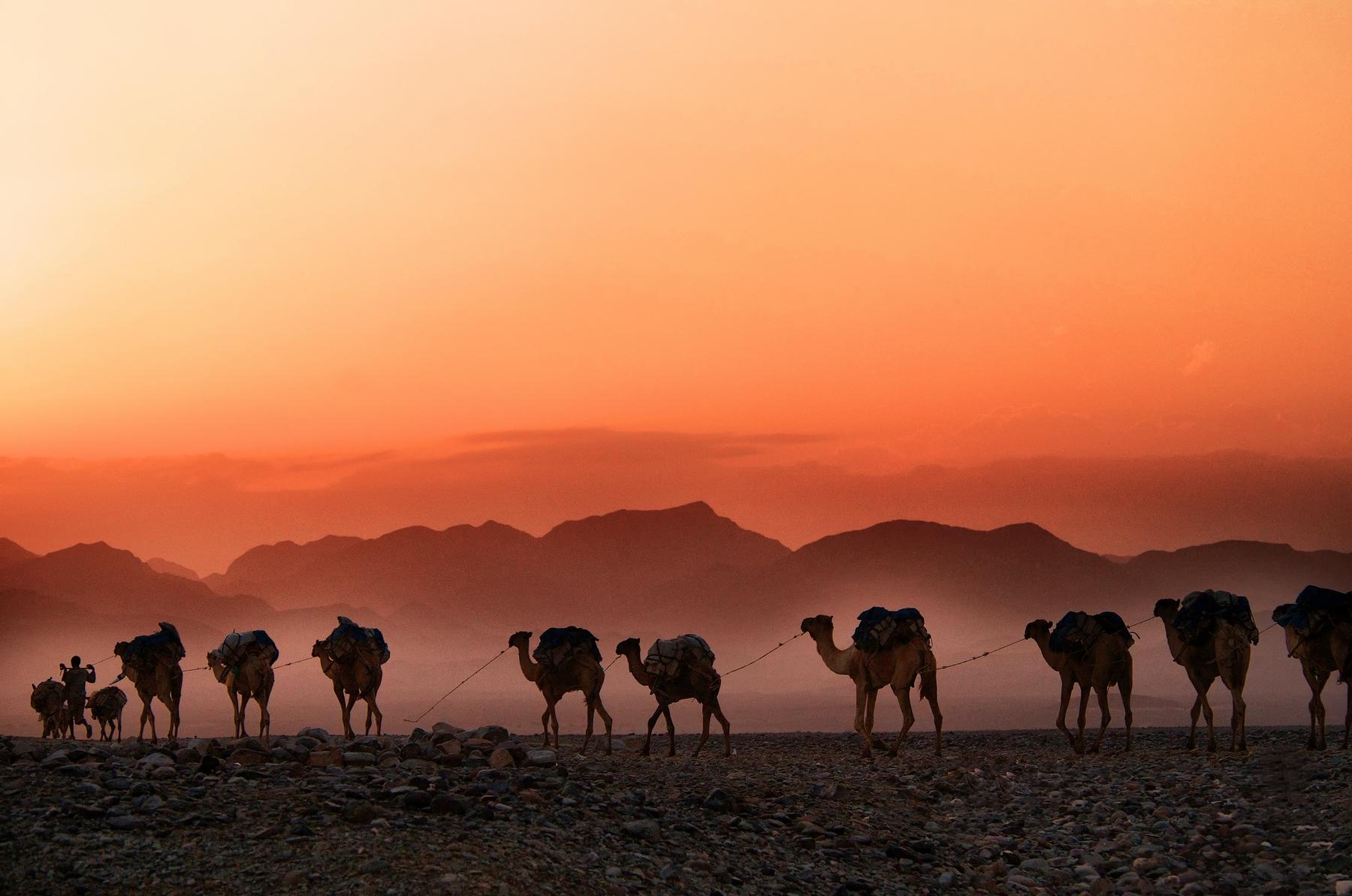 Лучшие направления для путешествий: невероятная Эфиопия