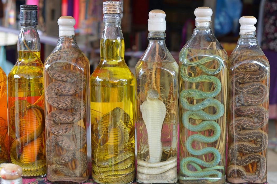 Αλκοολούχα ποτά με φίδια