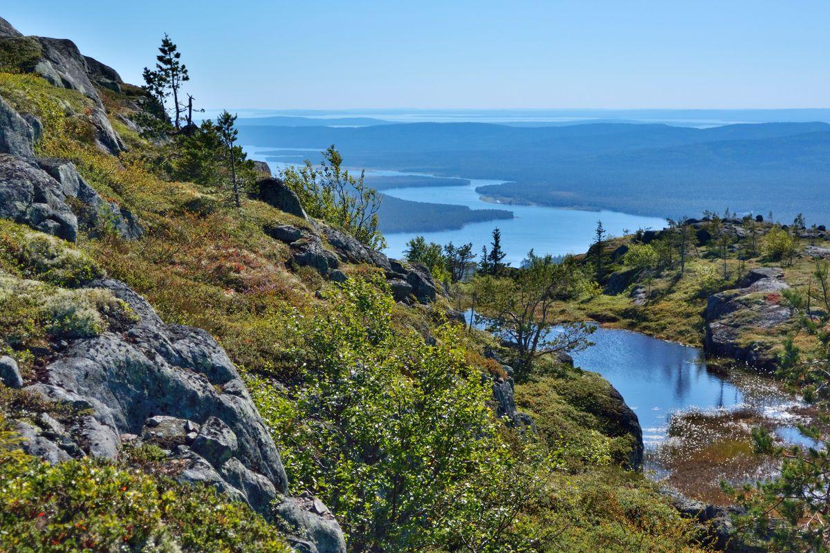 До национального парка «Паанаярви» в Карелии легко добраться из Санкт-Петербурга или Мурманска