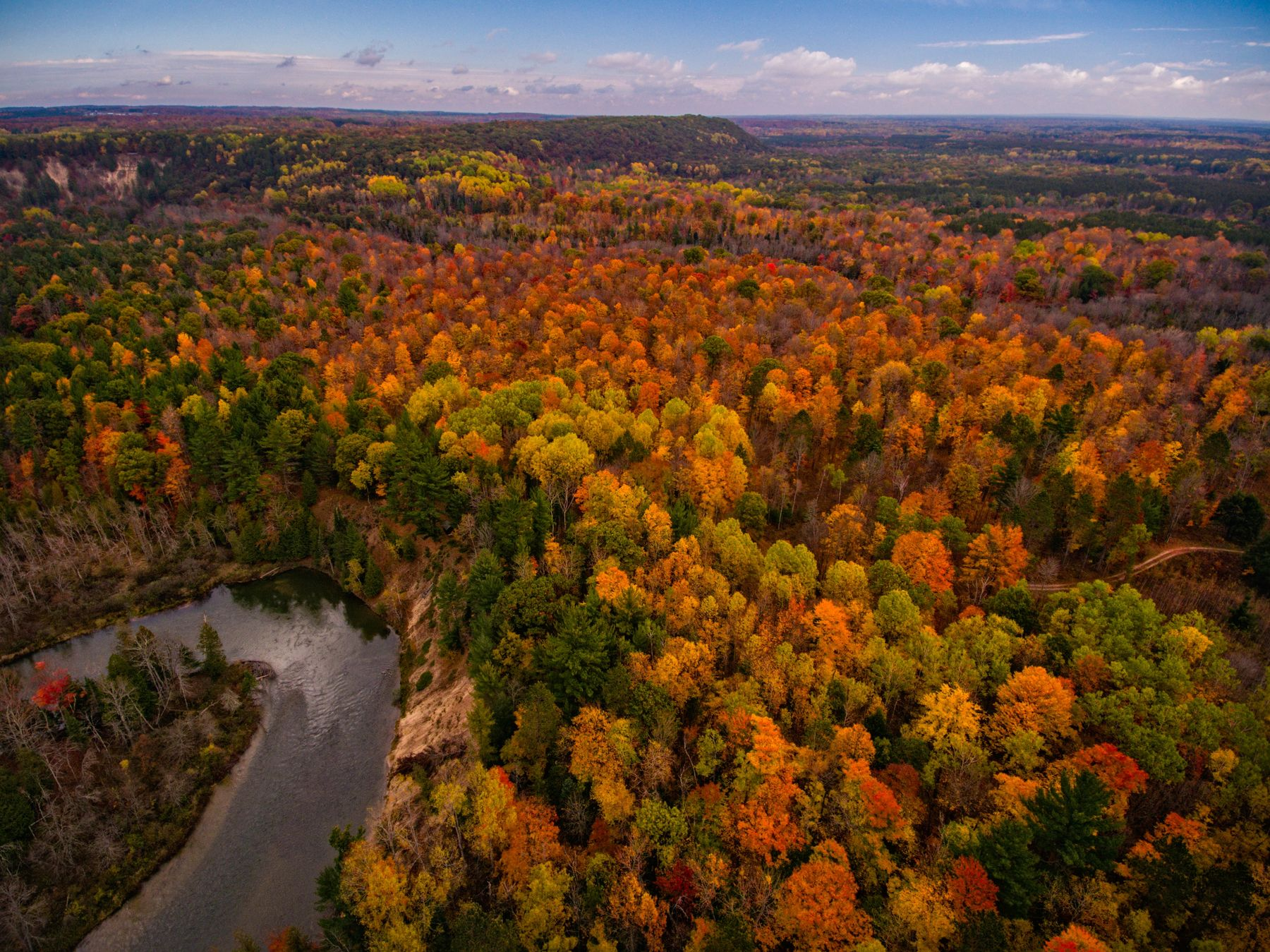 aerial view of forest with fall colors