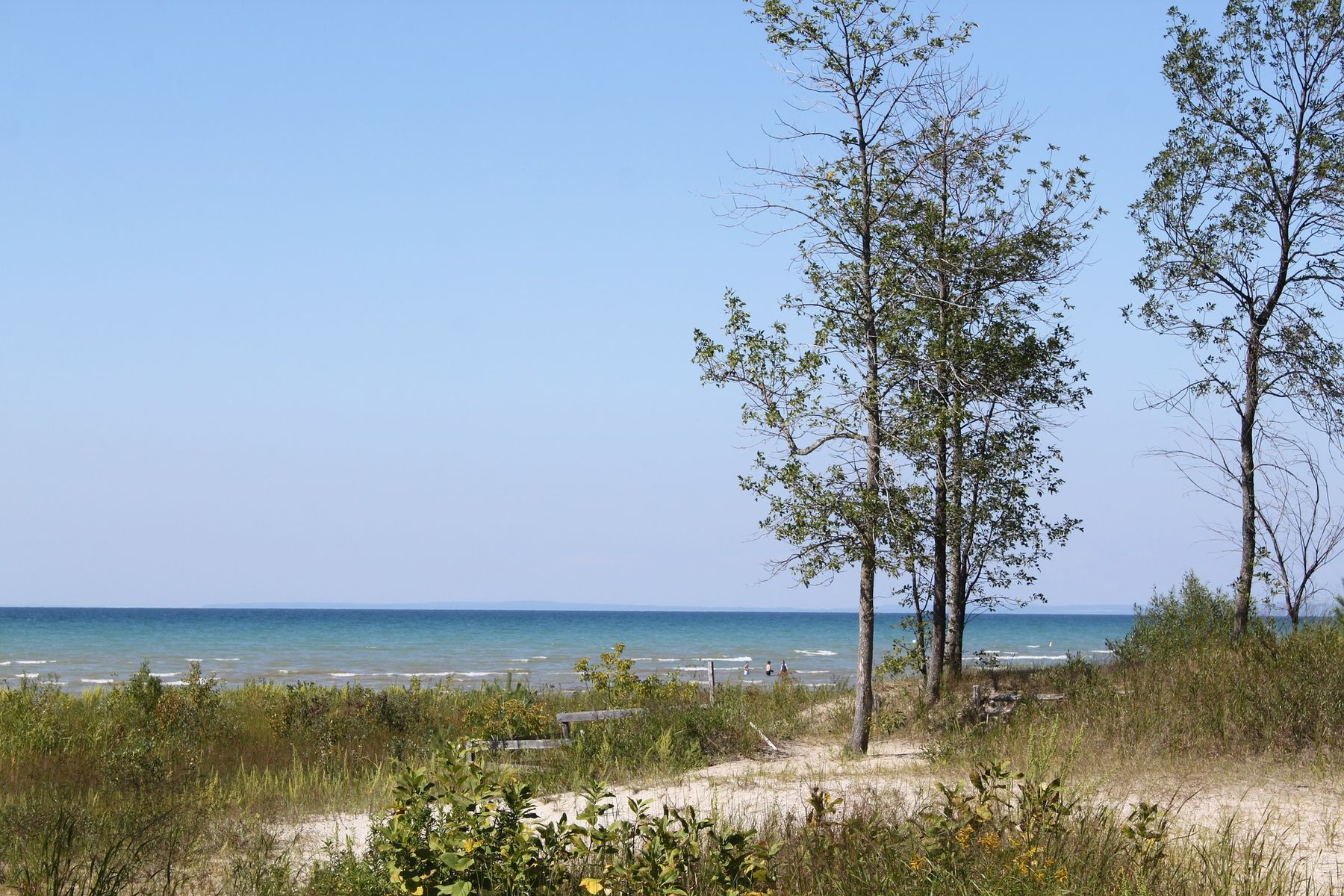 sand and grass in Wasaga Beach on a sunny day in Ontario