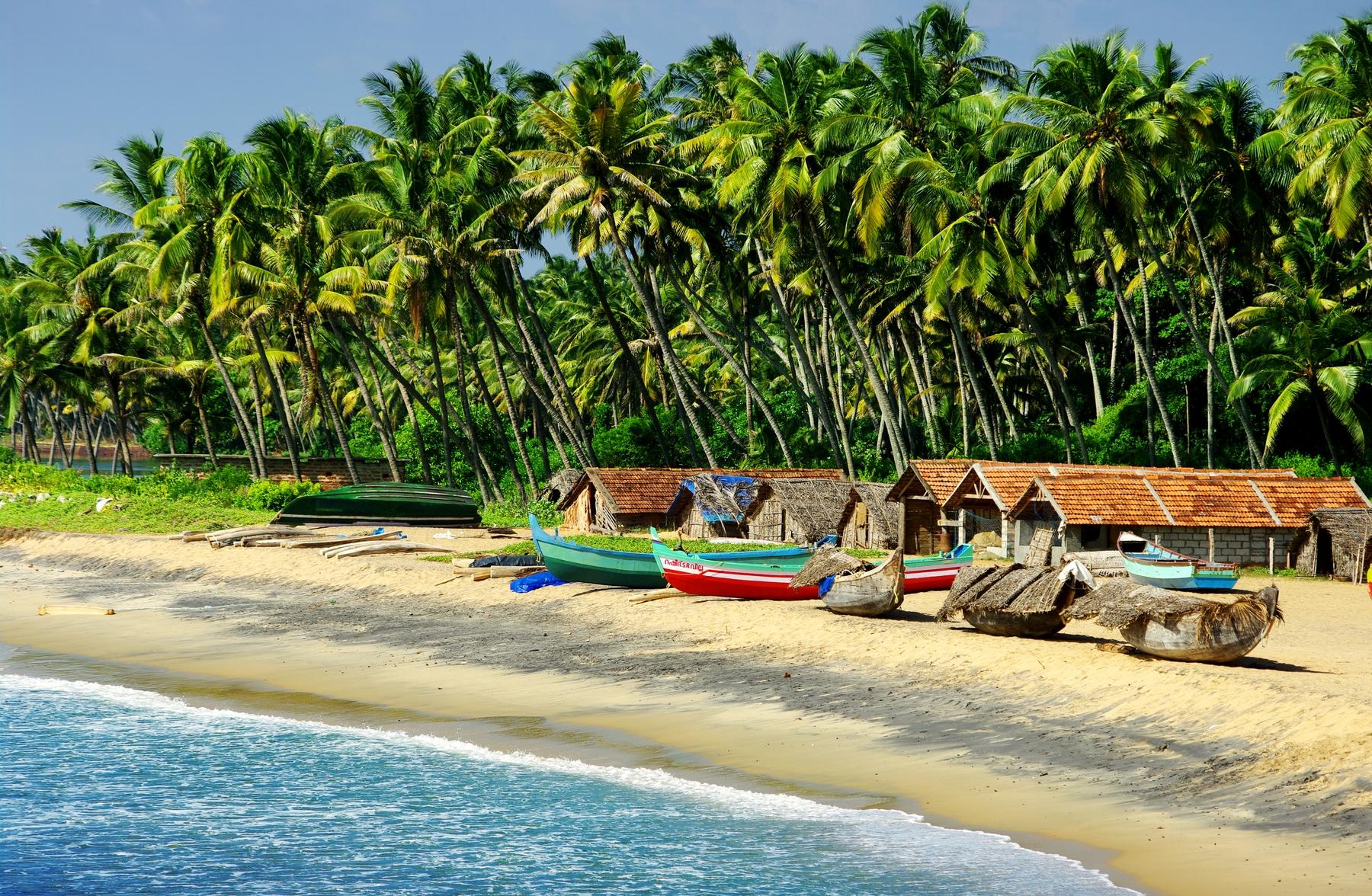 Куда поехать на море зимой: отдых в Гоа