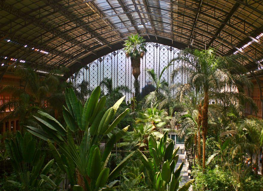 Η ζούγκλα του σταθμού Atocha - ταξίδι στη Μαδρίτη