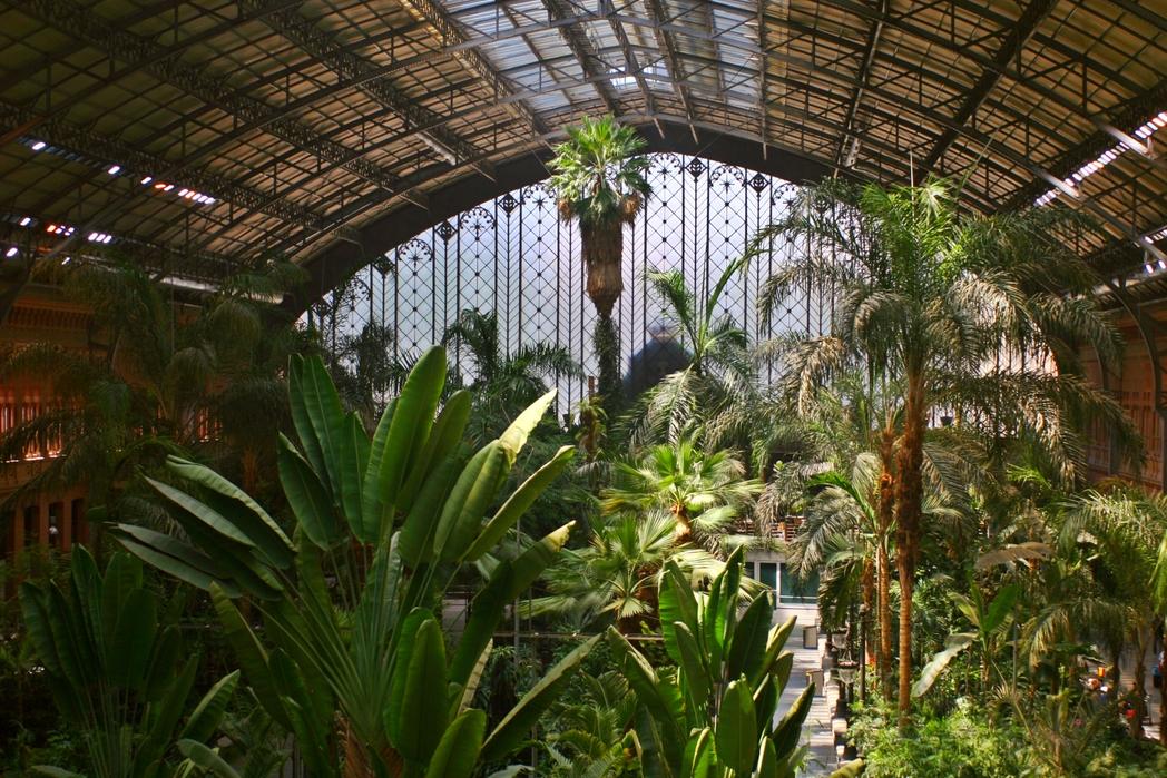 Ο εξωτικός κήπος στον σταθμό Ατότσα στη Μαδρίτη.