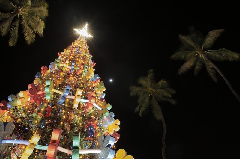 ホノルル市庁舎前のクリスマスツリー