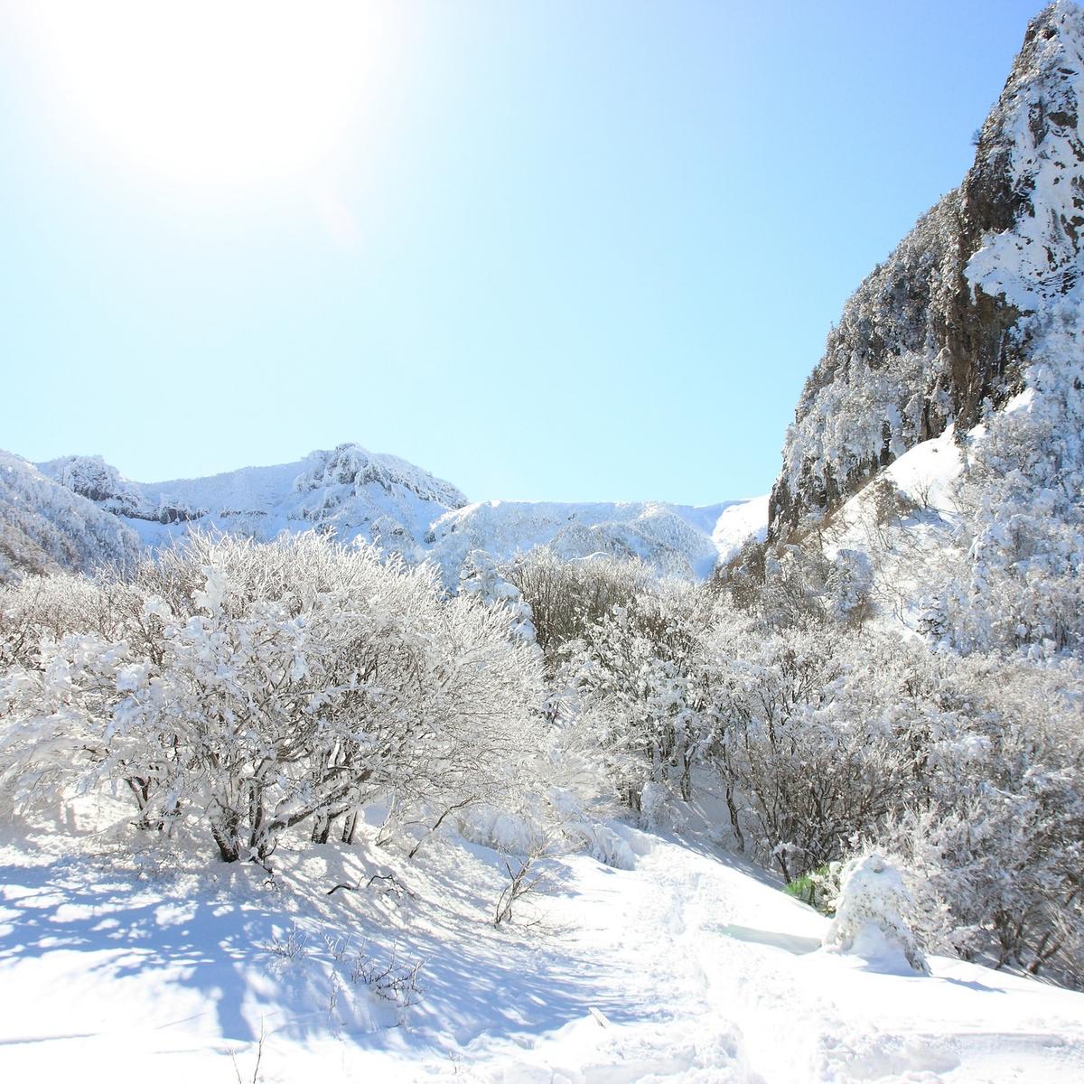 Winter in Deutschland - Tipps gegen den Winterblues: Möglichst viel Sonne tanken